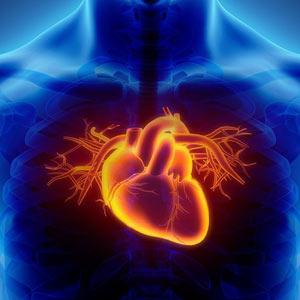Cardio-Vascular Complaints